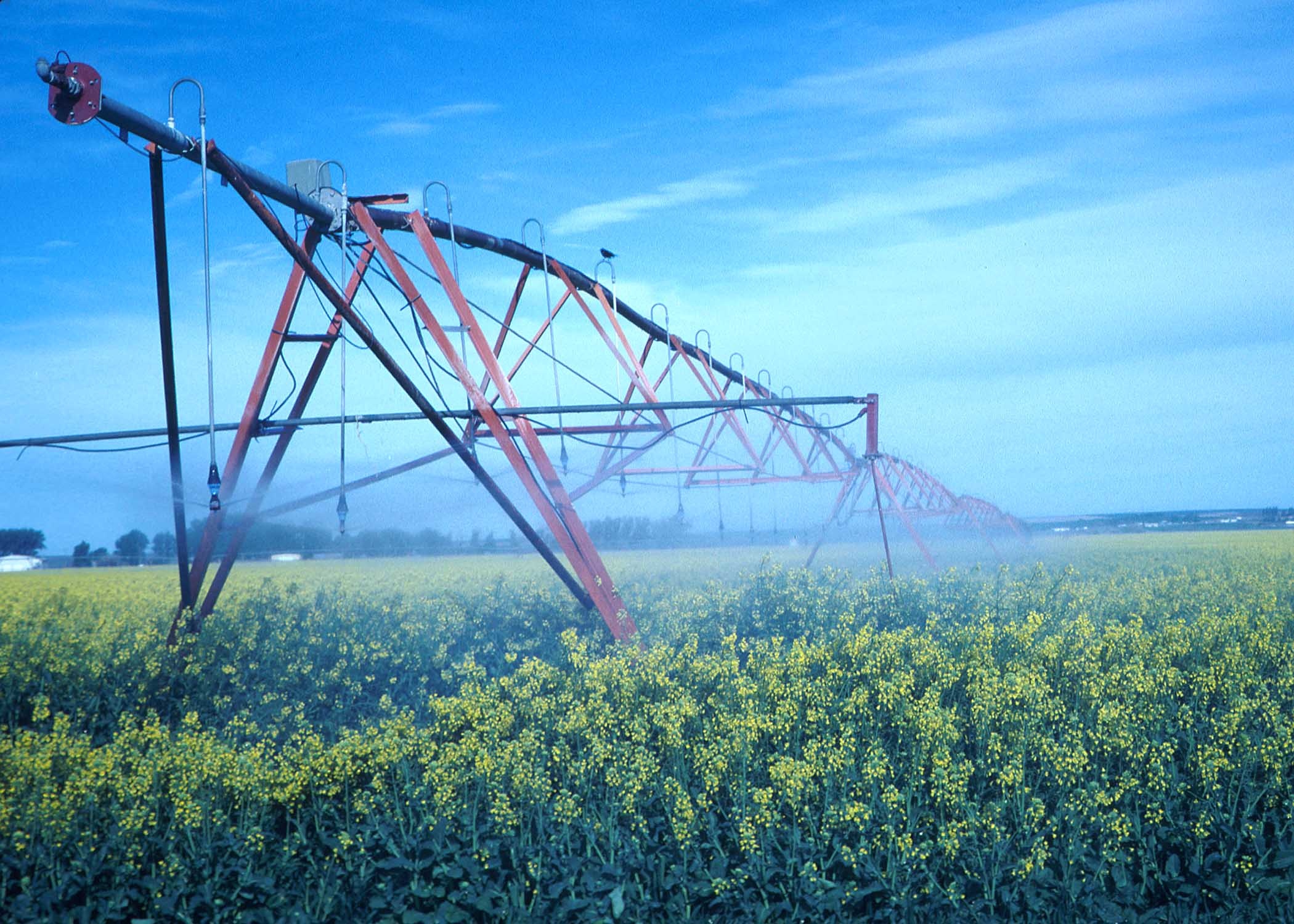 Center pivot irrigation system (courtesy of USDA, NRCS, Photo Gallery).